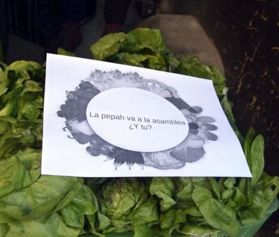 Diagnóstico participativo y mejora de la participación en la Cooperativa Agroecológica Hortigas